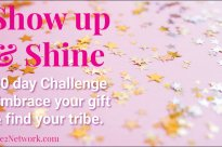 Show Up & Shine! A 30-Day Challenge to ignite your biz!